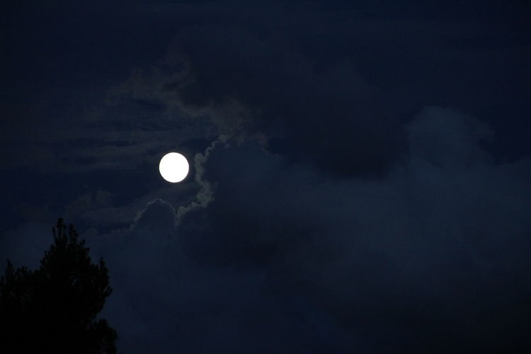 Low angle view of moon in sky at night