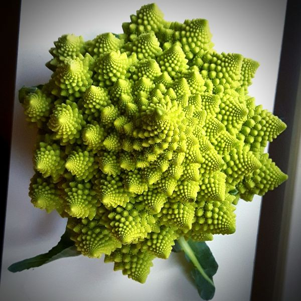 Fractals in nature. Green Color Freshness Growth Nature Fractals In Nature Fractal Food Fractals Fractaldesign Cruciferous