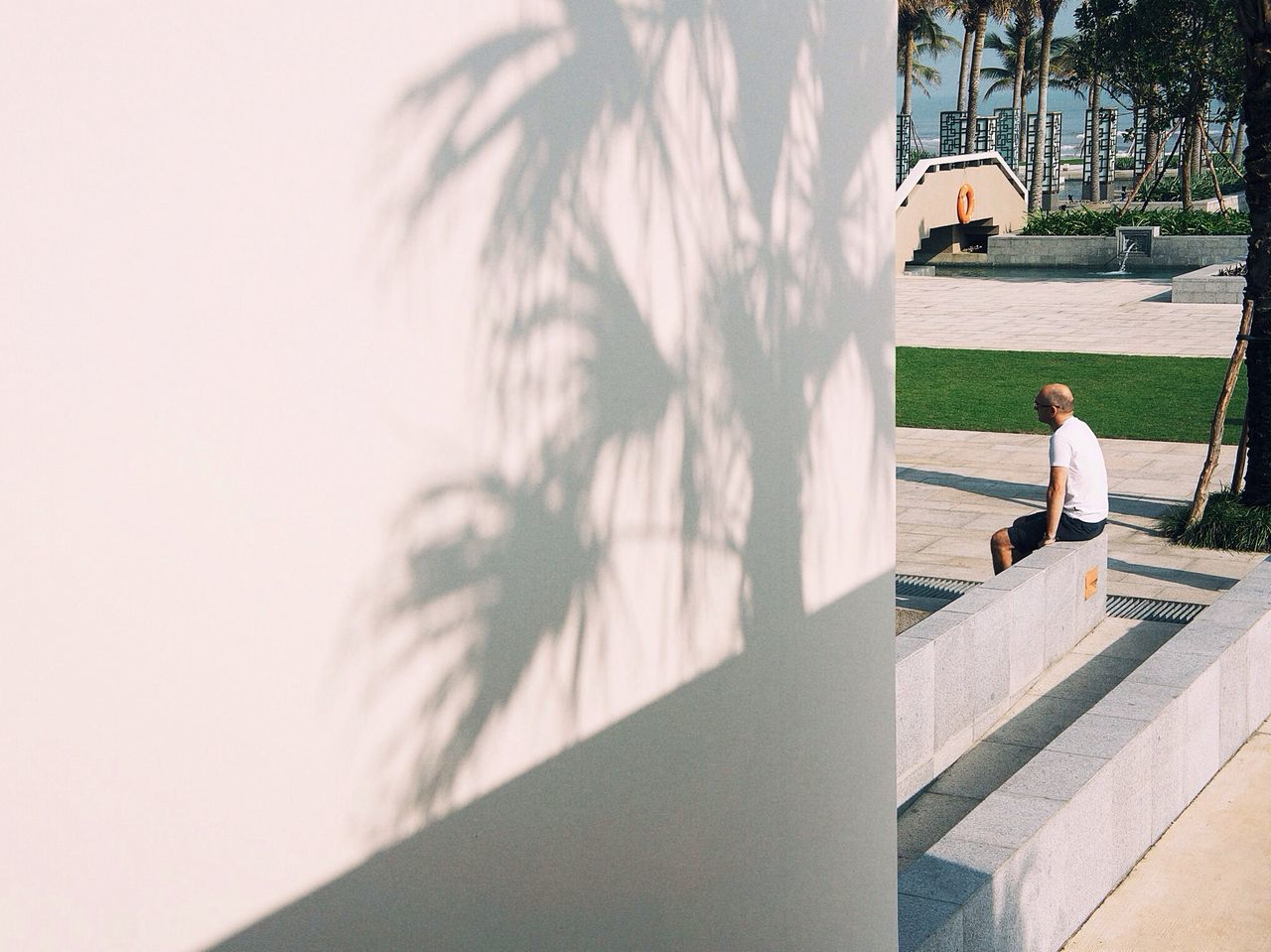Side view of man with shadow of palm leaves on wall