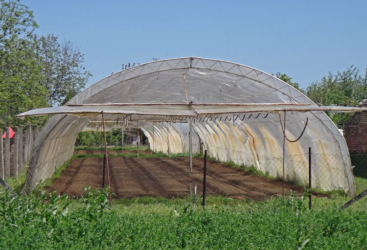 Gardening dome makes agricultural benefits in early crops and plants Gardening Agriculture Built Structure Day Dome Field Garden Grass Greenhouse Growth Land Nature No People Plant Plantation Sky