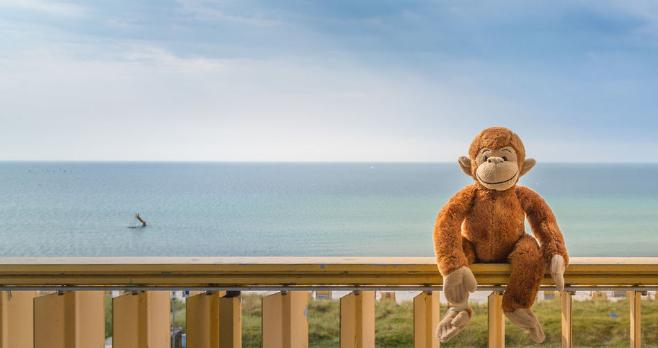 Teddy Teddybear Teddy Bear Toys Ocean Ocean View Portrait Open Edit Eye4photography  Capture The Moment Connected By Travel
