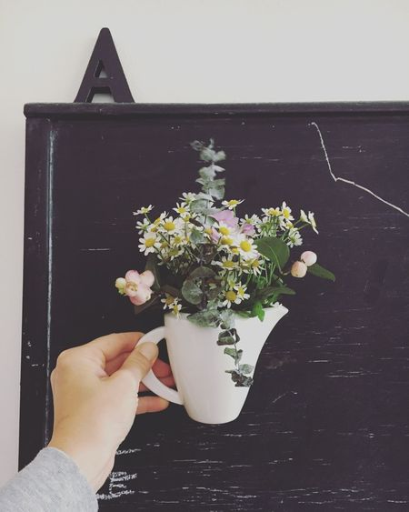 Human Hand Human Body Part Holding Flower One Person Nature Human Freshness Hand Berlin Kitchen Blumen Eukalyptus Blumenstrauß Letter
