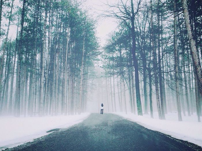 Trees Forest Girl Snow Fog Park Ohio Lost In The Landscape