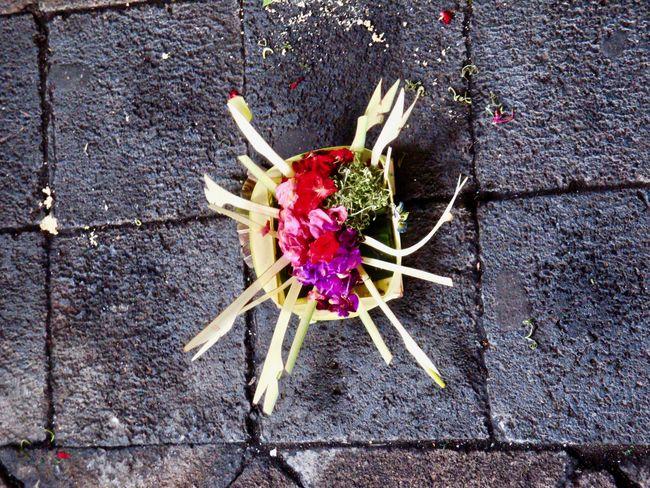 """""""Banten""""- little daily offerigs to the Balinese deities - """"banter"""", kleine, tägliche Opfergaben der Balinesen an die Hindu Gottheiten Asian Culture Bali Hindu Culture Flower No People Offering Flowers Offering To The Gods Religion And Beliefs Religious"""