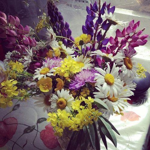 Полевые цветочки букетик полевой
