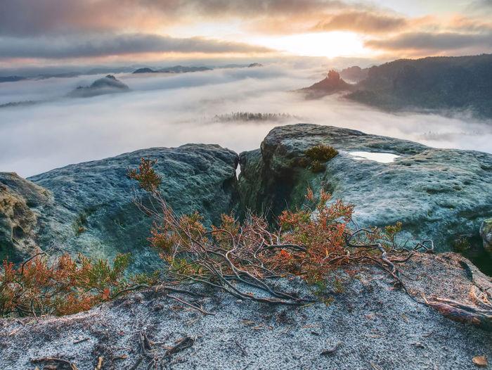 Pink toned landscape of dark rocky mountain ridge silhouette in foggy clouds