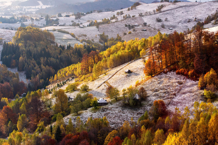 High angle view of trees and mountains during autumn