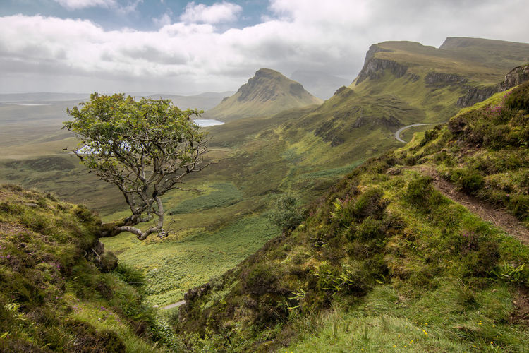 Green Scotland Scotland 💕 Skye Beauty In Nature Cloud - Sky Grass Green Color Highlands Idyllic Landscape Mountain Moutians Nature No People Outdoors Quirang Sky Slope The Quiraing Tranquil Scene Tranquility