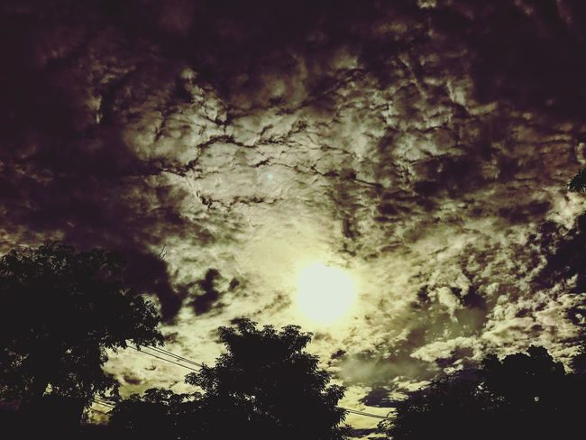 Nature Sky Cloud - Sky Low Angle View Weather Beauty In Nature Tree No People Scenics Silhouette Tranquility Tranquil Scene Outdoors Night Storm Cloud
