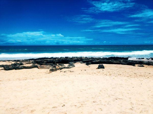 @amncst // @atuado Beach Brasil Brazil Beachphotography VSCO Vscocam Amncsr Photo Praia Water Sea Flamingo Wave Beach Blue Bird Sand Summer Swimming Surf Seascape Horizon Over Water Coastline Coast Ocean Shore Sea Life First Eyeem Photo