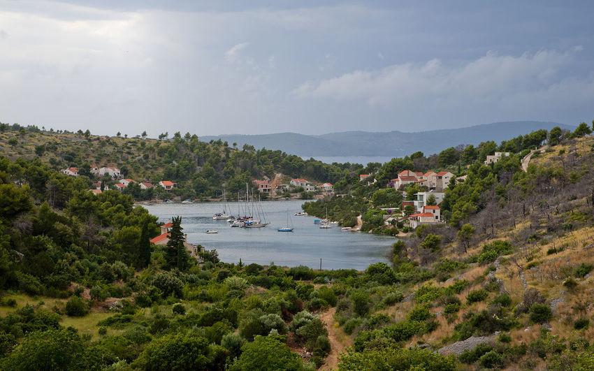 Beauty In Nature Scenics - Nature Sky Water Nikon Sea Travel Destination Travel Vacation Supetar Brac Dalmatia Croatia Nature Tree Landscape Bay Balkan Hrvatska Bobovisca Environment