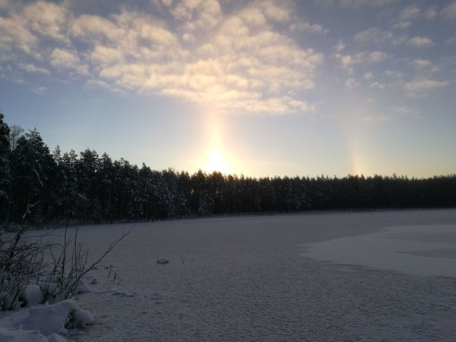 Sun Halo Around Dun Circle Around Sun Sunset Tree Sunlight Snow Nature Landscape No People Cold Temperature Sky Outdoors Beauty In Nature Burried In Snow Wilderness Camping Cold Nature Frozen Winter