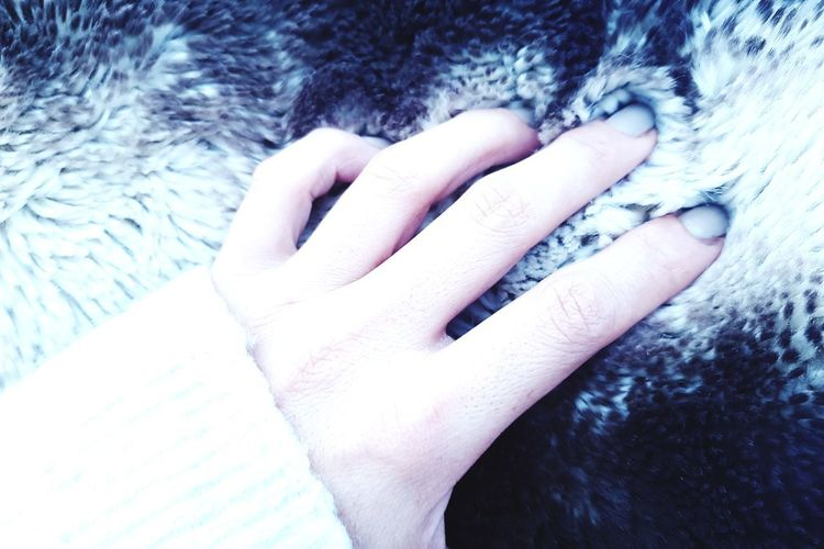 ... People Frio Invierno Inviernografias Wintertime Winter Winter Morning Cold Days Cold Morning Human Hand Close-up Finger Human Finger Body_part Hand