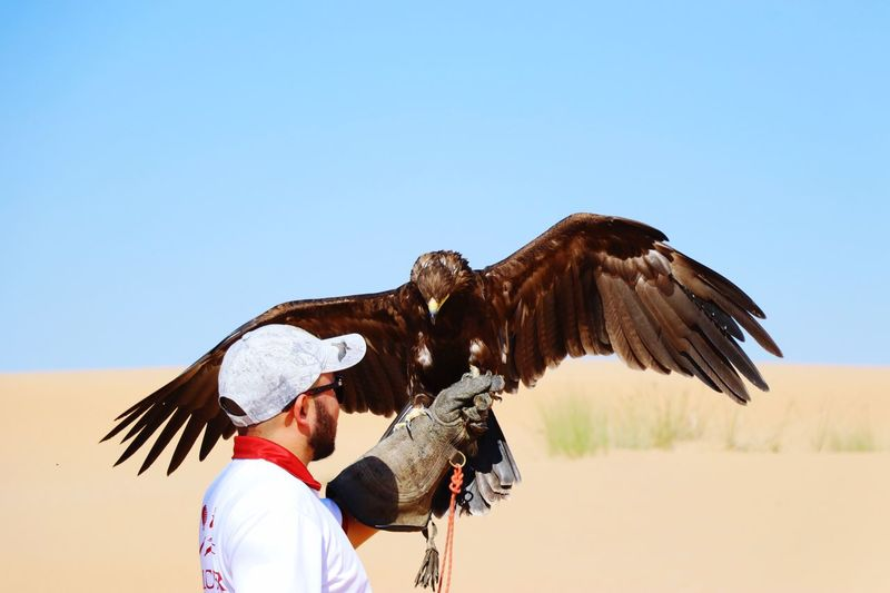 Man holding eagle at desert