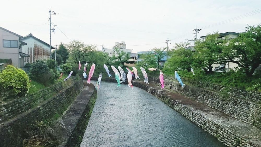 Carp-shaped streamers. Holiday Japan Japan Culture May River View Inuyama