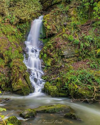Cracking day for shooting waterfalls yesterday! Waterfall Waterfalls ChasingWaterfalls Scotland Glasgow  Roukenglen VisitScotland Insta_Scotland Loves_Scotland Scotlandlover Longexposure Longexposureoftheday Longexpoelite Longexpohunter Scottish Natureglobepix Awesome_photographers