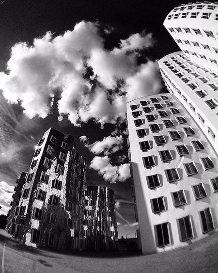 Düsseldorf ✌ Bw_instantscatcher Bw_in_bl Bwzgz Blacknwhite_perfection Worldframeclubbw Bw_batavia Flair_bw Princely_bw Photo_storee_bw Be_one_bw Ig_impulse_bw Bw_awards Artphoto_bw Bw_people Bw_singapore Show_us_bw Superstarz_bw Ig_energy_bw Match_bw Ig_shotz_bw Bw_greece Bnw_madrid Bnw_rome