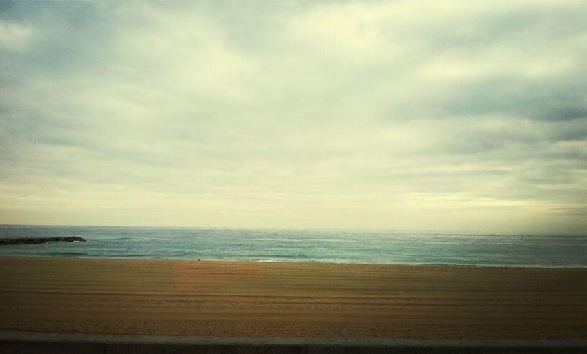 Terra, Mar I Aire