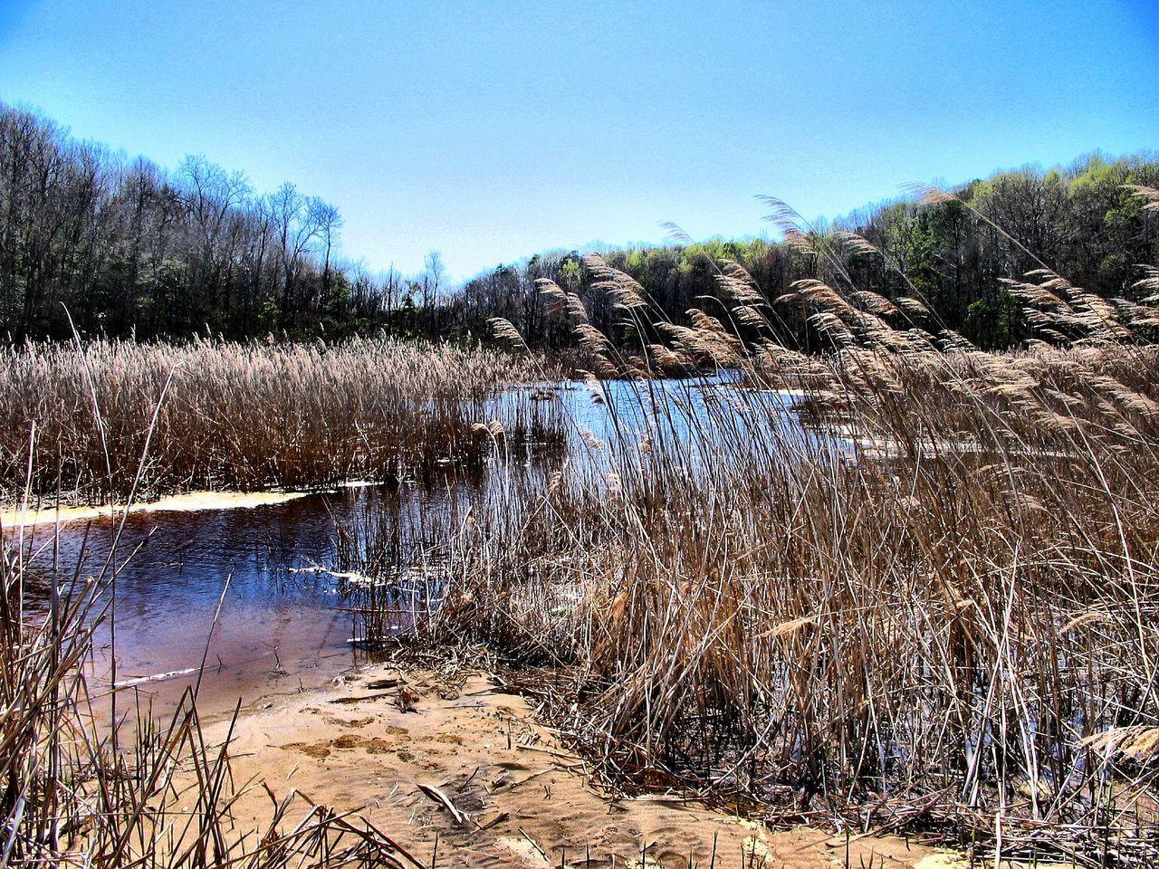 Water Splashing In Pond Against Clear Blue Sky