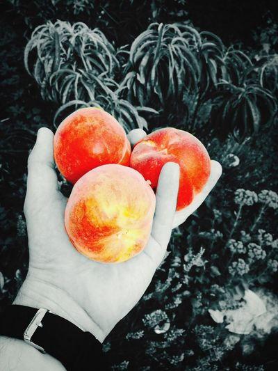 Peach What We Do...
