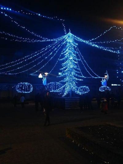 Christmas Night Celebration Christmas Decoration Illuminated Christmas Lights Christmas Tree