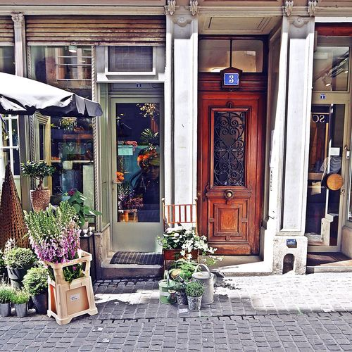 It's okay to be happy with a calm life 🙌🙏Built Structure Architecture Cute Store Shopfront Storefront View Shopping Time Zurich, Switzerland Iwalkedthisstreet Small Shop Eyeemphotography See What I See EyeEm Gallery Taking Photos Slow Living From My Point Of View Naturelovers Freshness Slow Down Nature On Your Doorstep Seeking Inspiration Potted Plants Flower Neighbourhoodnumbers BYOPaper! Plantproblem