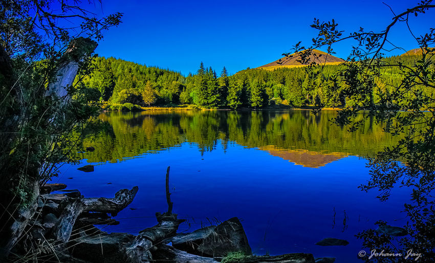 Auvergne Foret Lac Volcanique Montagne Beauty In Nature Bleu Sky Blue Day Forest Lake Landscape Mountain Mountain Range Nature No People Outdoors Reflection Sky Tranquil Scene Tranquility Tree Volcanique Volcano Water Auvergne Vulcany France Mix Yourself A Good Time Your Ticket To Europe Been There.