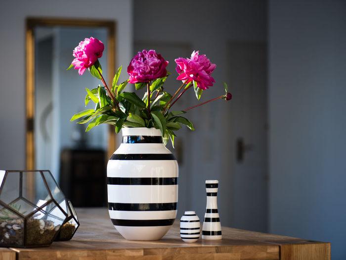 Pink peonies in vase on table