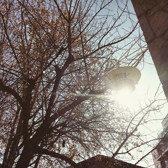 Sunny Day February Around The City Instapatra Instadaily Instaliforlike Instalifo