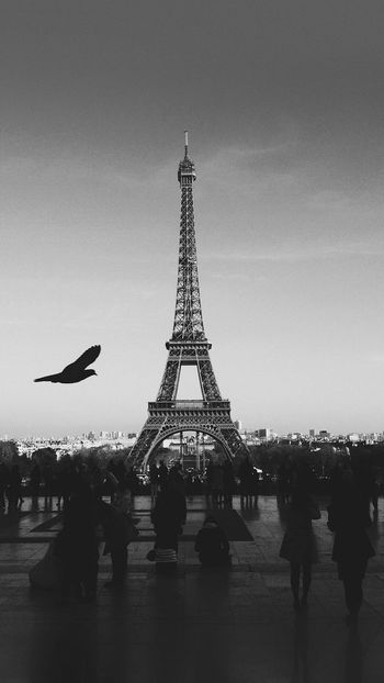 IPhoneography IPhone7Plus Wallpaper Real People Tower Travel Destinations Tourism Large Group Of People Women Men People Nightphotography City Eiffel Tower City Of Love Blackandwhite Grange Vintage Noël 2017 2017 Marry Christmas Followme Sexygirl Afghanistan Portrait