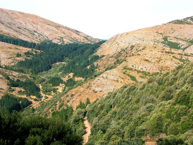 climbing monte linas with family Beauty In Nature Clear Sky Countryside Day Green Color Growth Idyllic Landscape Mountain Mountain Range Nature No People Non-urban Scene Outdoors Physical Geography Plant Remote Scenics Sky Solitude Tourism Tranquil Scene Tranquility Valley Wilderness