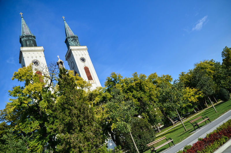 Sombor Tree Plant Sky Architecture Built Structure Building Exterior Place Of Worship Nature Religion Spirituality Building Low Angle View No People Belief Day Tower Travel Destinations Travel Spire  Vojvodina Church In Sombor Church Architecture Cathedral