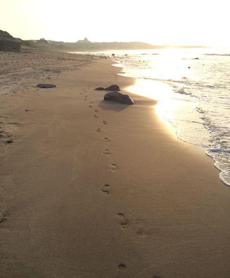 回首來時路 Beach Land Sea Water Sand Sky Sunset Day Tranquil Scene