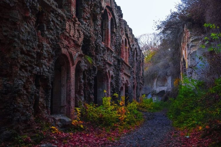 Tarakaniv Fort, Ukraine EyeEmNewHere Nature Rock Day No People Rock Formation Rock - Object Sky Land Tranquility Scenics - Nature Solid Tranquil Scene Non-urban Scene Outdoors Plant Travel Destinations Tree Beauty In Nature Geology Forest Formation Eroded