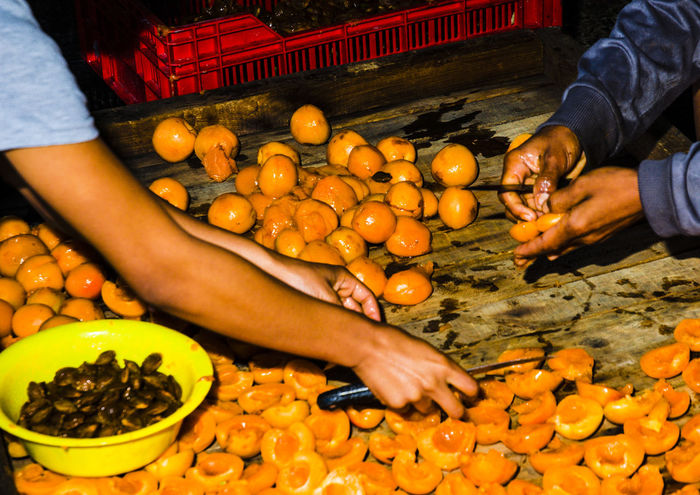 Apricots Hands People Working Together Day Farm Work Food Freshness Fruit Hand At Work Holding Human Body Part Human Hand Indoors  Lifestyles Orange Colour People People Working Real People Two Pair Of Hands Two People Working