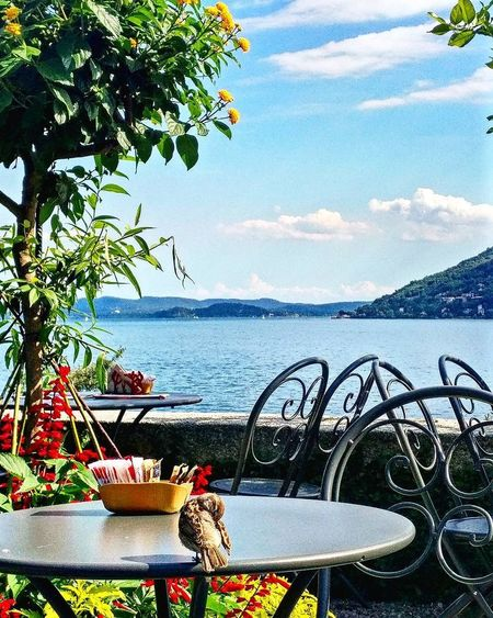 Table for one. Mountain Lake Restaurant Sparrow Bird Lago Maggiore Alps Isola Madre Borromean Islands Sea Water Tree Day Nature No People Sky Outdoors Horizon Over Water Beauty In Nature Scenics Freshness