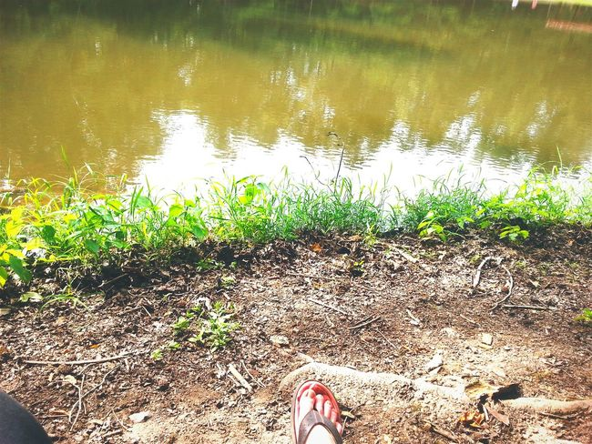 Holiday POV Camp Sidney Dew Camping Trip Scum Pond Fishing Free Time Worn Out