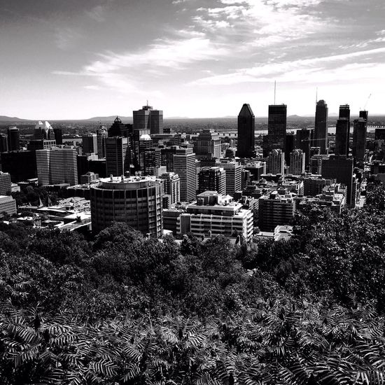 Montreal from the belvedere Montréal IPhoneography Architecture Mobileart NEM Black&white