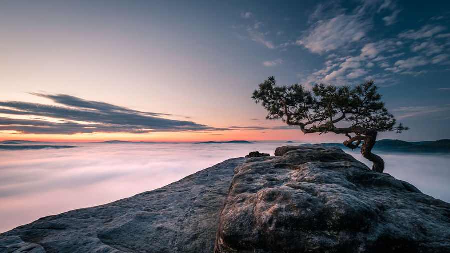 EyeEmNewHere Beauty In Nature Cloud - Sky Day Fog Nature Outdoors Real People Rock - Object Scenics Sea Sky Sunset Sunsrise Tranquil Scene Tranquility Tree Water