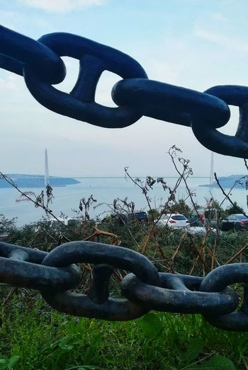 EyeEm Best Shots EyeEm Nature Lover Grey Green Blue Tree Sea Nature Plant Water Chain Strength Close-up Sky Buoy Fishing Tackle Boat Life Belt Ocean Horizon Over Water Calm
