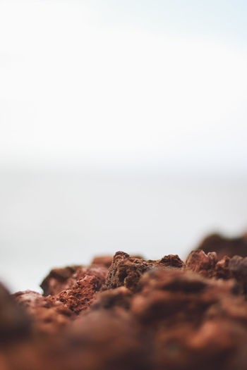 Close-up of chocolate cake against sky
