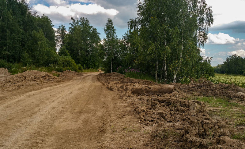 Outdoors Country Road Dirt Road Russia Moscow Landscape подмосковье The Way Forward Road Transportation Agriculture Woodlands Countryside Scenics Rural Scene No People Day Tree Growth Beauty In Nature Dirt Clay Field Summer Farm