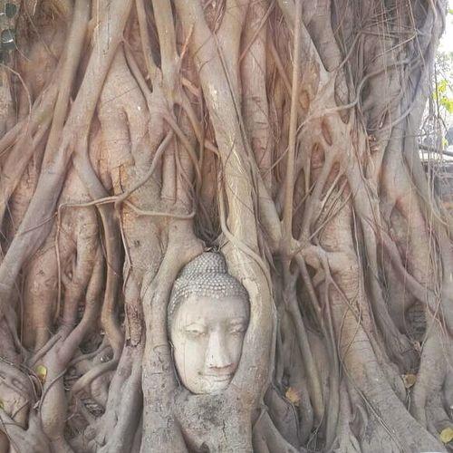 Ayutthaya Bangkok ASIA