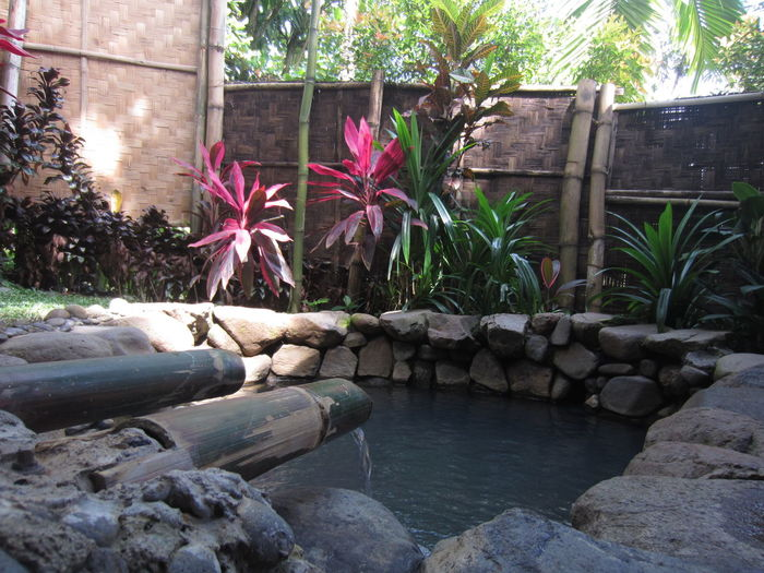 Hot Water Pond Hot Spring Tropical Hot Spring Leisure Activity Explore Leisure Time Wellness Spa Serenity Serene Calmness Calm Comfort at Giri Tirta Bogor, Indonesia