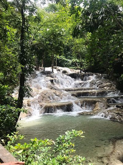 Places You Must To See Dunns River Falls Jamaica Waterfall Places I've Been Plant Growth Green Color Day Beauty In Nature No People Tranquility Outdoors Scenics - Nature Tranquil Scene High Angle View Flowing Water