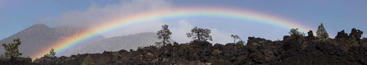 Panoramic view of rainbow over forest against sky