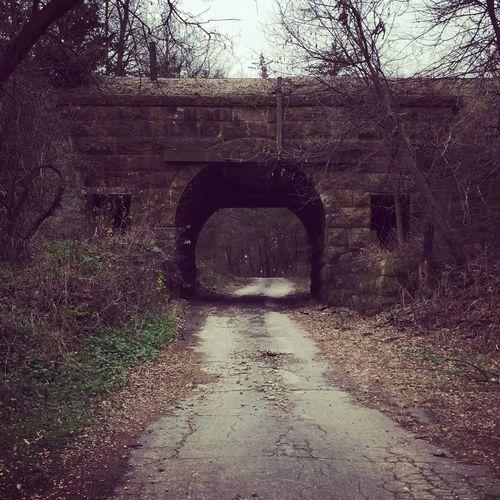 Railroadbridge 1889