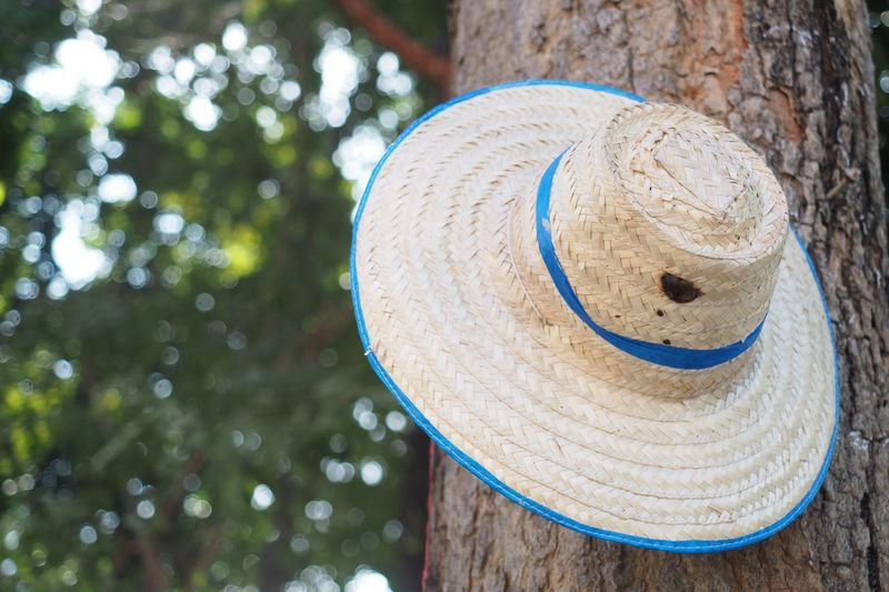 Thai styled sun hat is hanging on the tree over the out of focus leaf background with blurred spot. Sun Hat EyeEm Selects Wood - Material Focus On Foreground Tree Day No People Circle Nature Hat Shape Plant Outdoors Close-up Low Angle View Tree Trunk Trunk Art And Craft Still Life Creativity