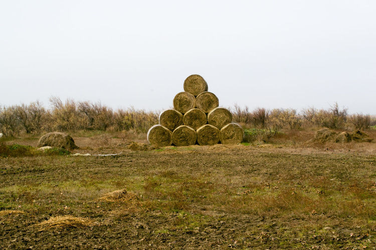 Agriculture Bales Countryside Evros Greece EyeEmNewHere Farm Field Grass Harvest Hay Landscape Natural Nature Outdoors