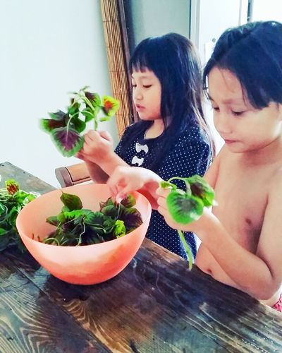 Kid Kiddo Kids Are Awesome Kids At Play Kids Photography Kids Having Fun Kids Being Kids Kids Kidsphotography Kids Cooking Siblings Helping Mom Helping Hand Vegetable Spinach Learning Learn Cooking